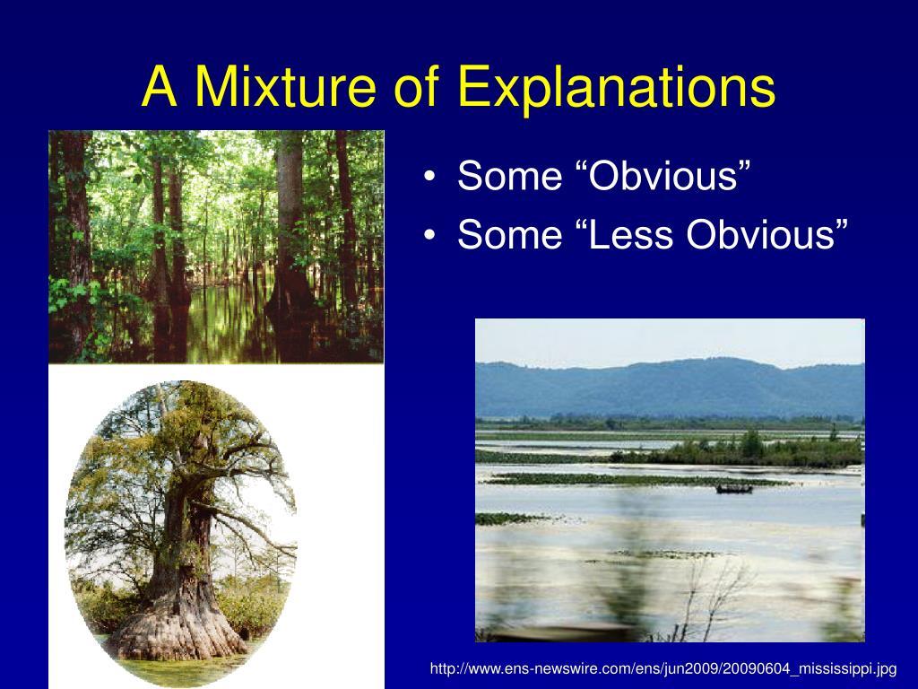 A Mixture of Explanations