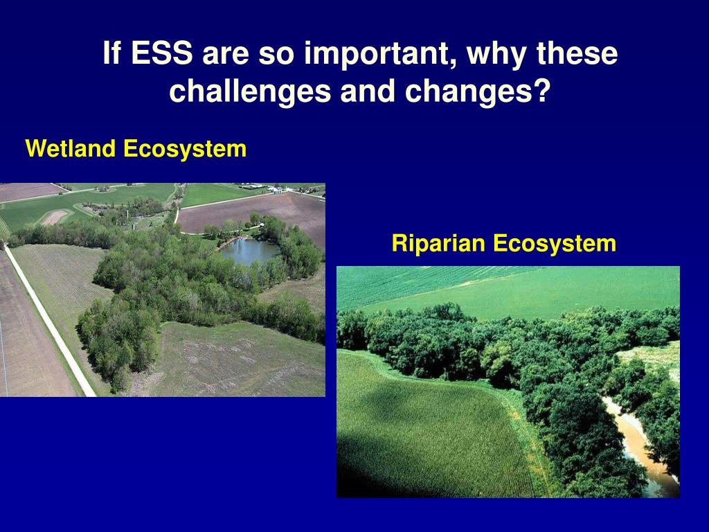 If ESS are so important, why these challenges and changes?