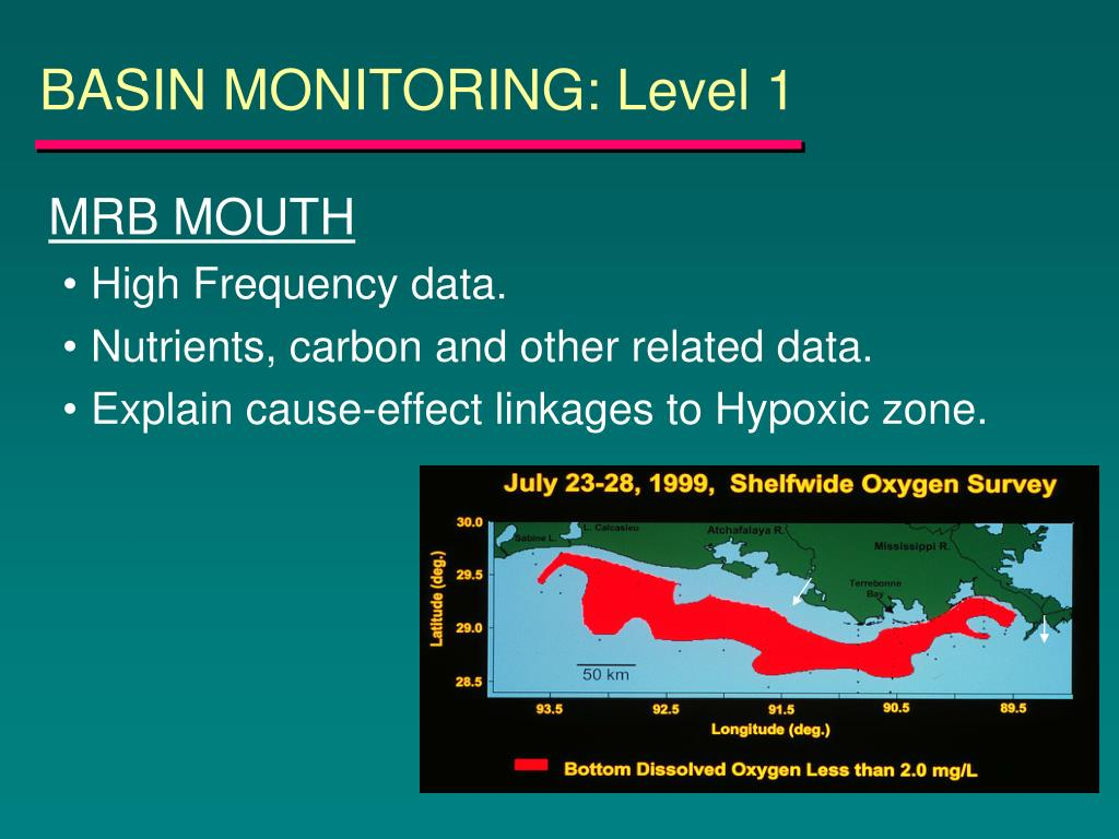 BASIN MONITORING: Level 1