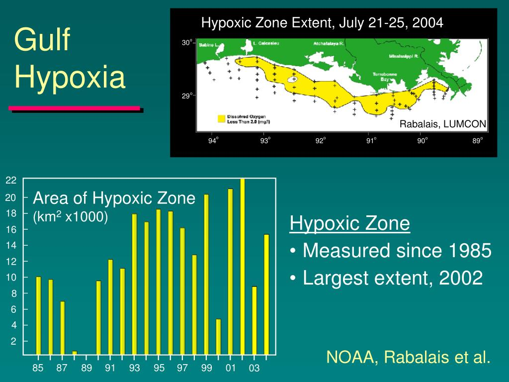 Hypoxic Zone Extent, July 21-25, 2004