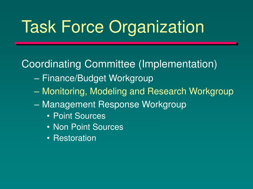 Task Force Organization