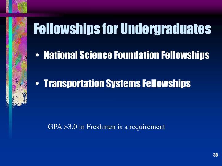 Fellowships for Undergraduates