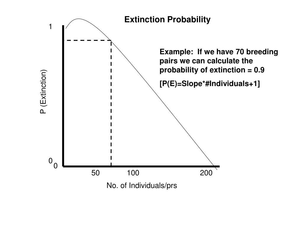 Extinction Probability