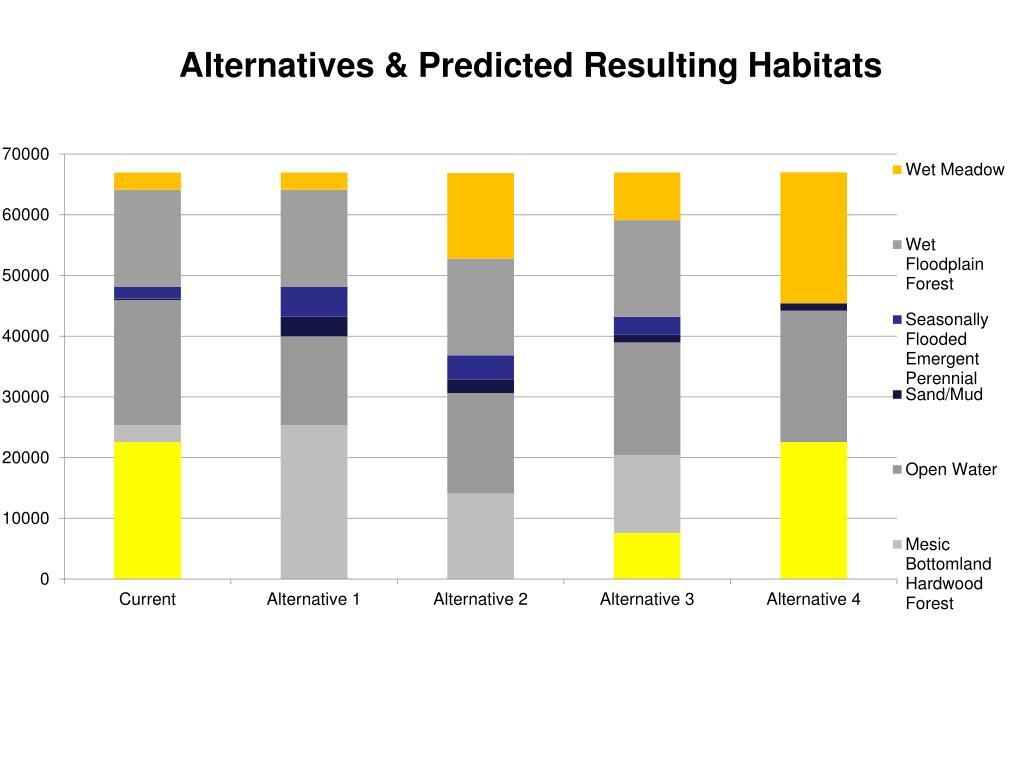 Alternatives & Predicted Resulting Habitats