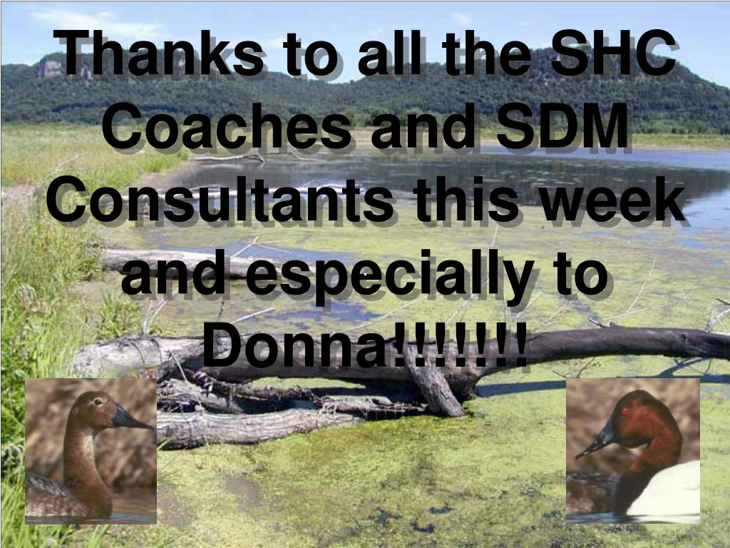 Thanks to all the SHC Coaches and SDM Consultants this week and especially to Donna!!!!!!!
