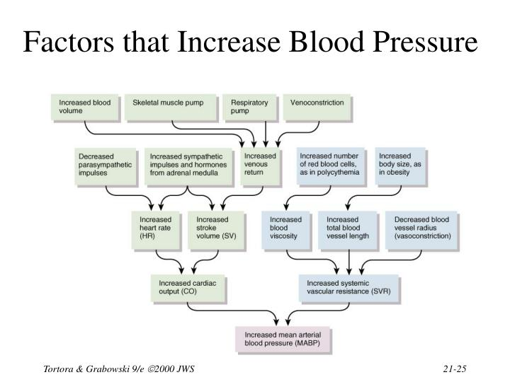 Factors that Increase Blood Pressure