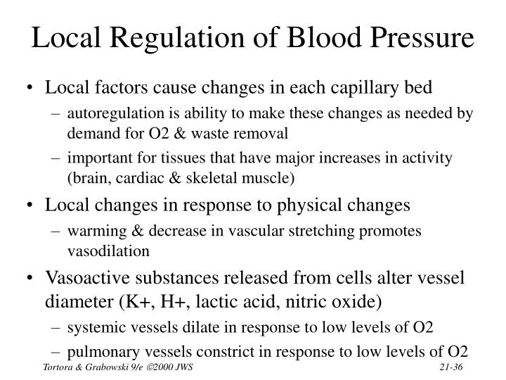 Local Regulation of Blood Pressure