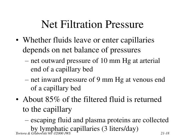 Net Filtration Pressure