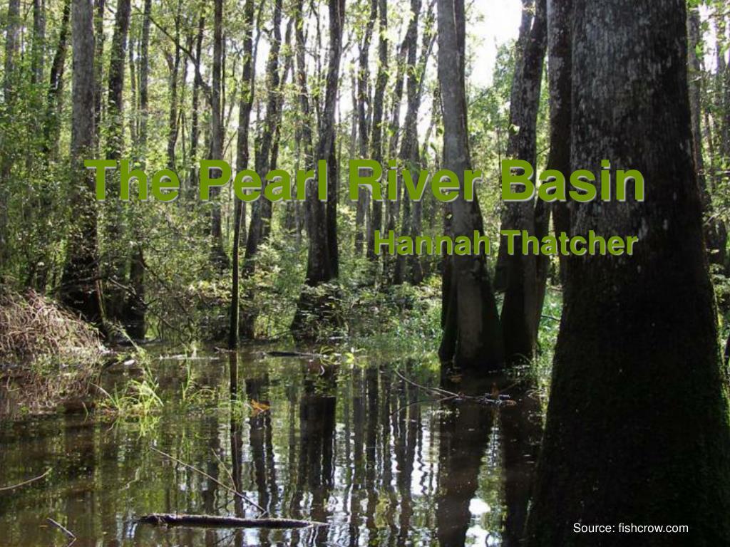 The Pearl River Basin