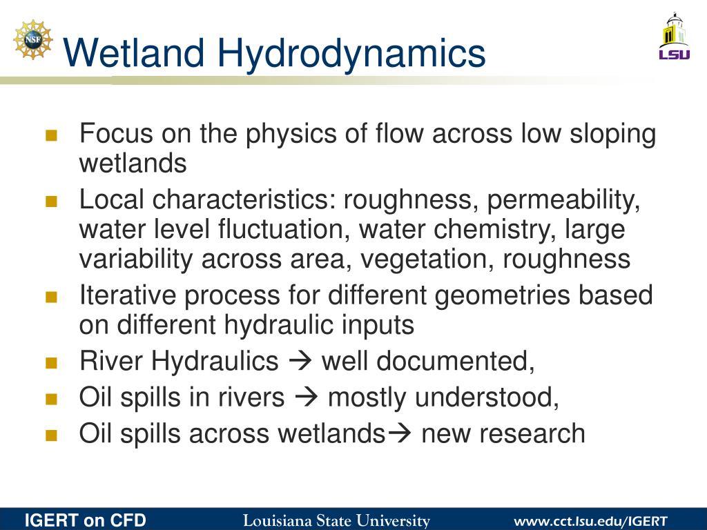Wetland Hydrodynamics