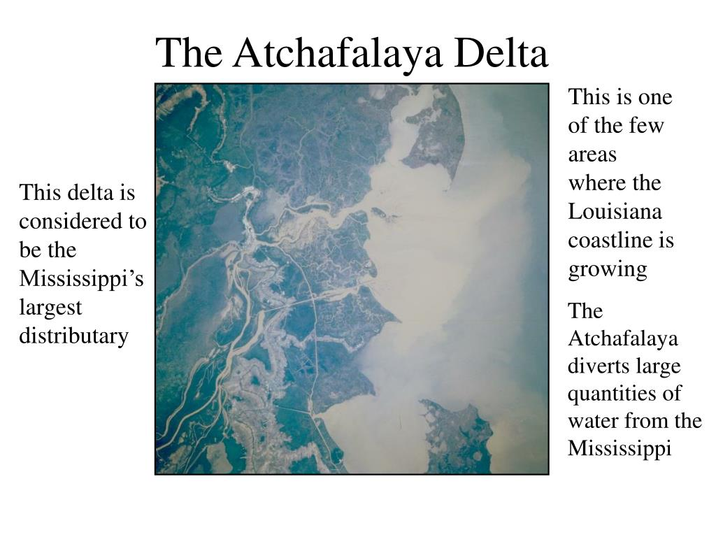 The Atchafalaya Delta