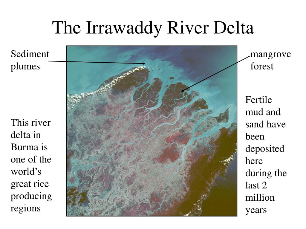 The Irrawaddy River Delta