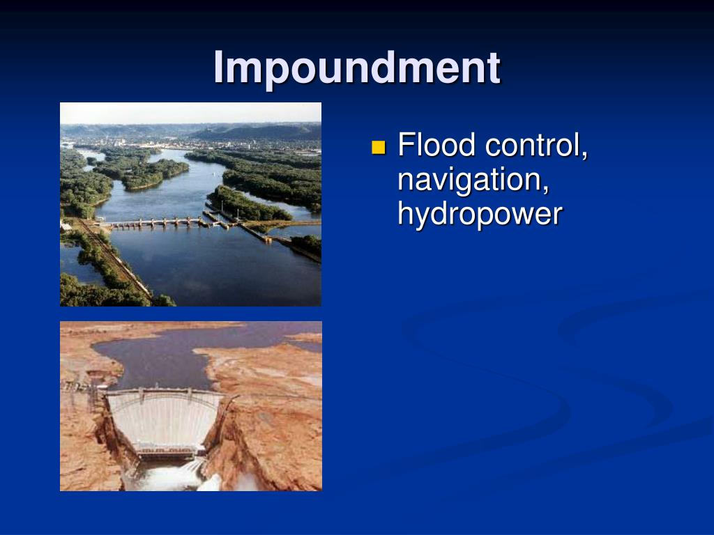 Impoundment