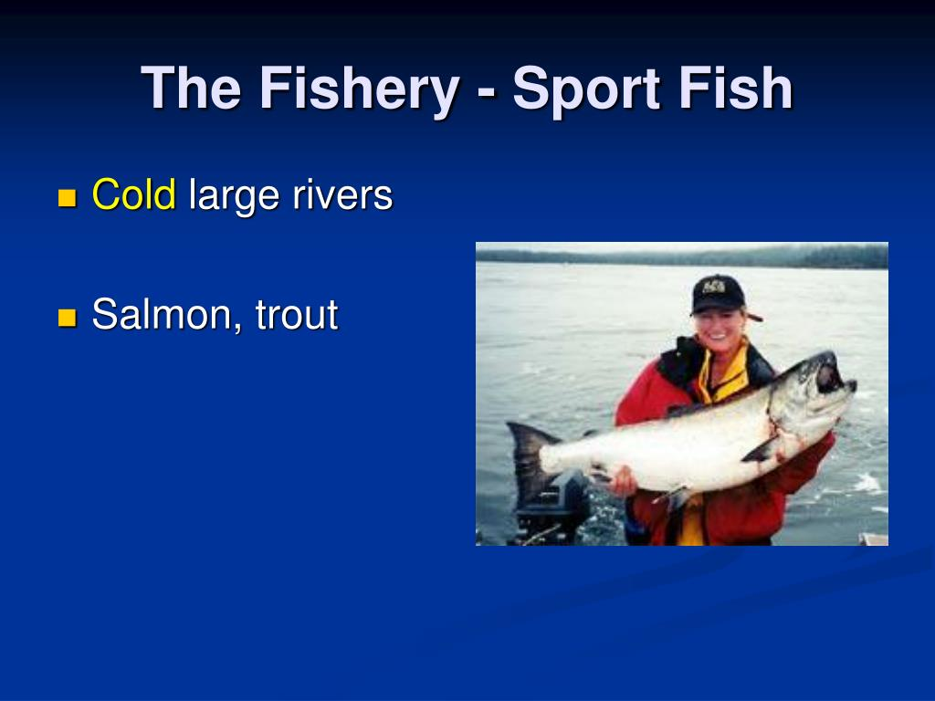 The Fishery - Sport Fish