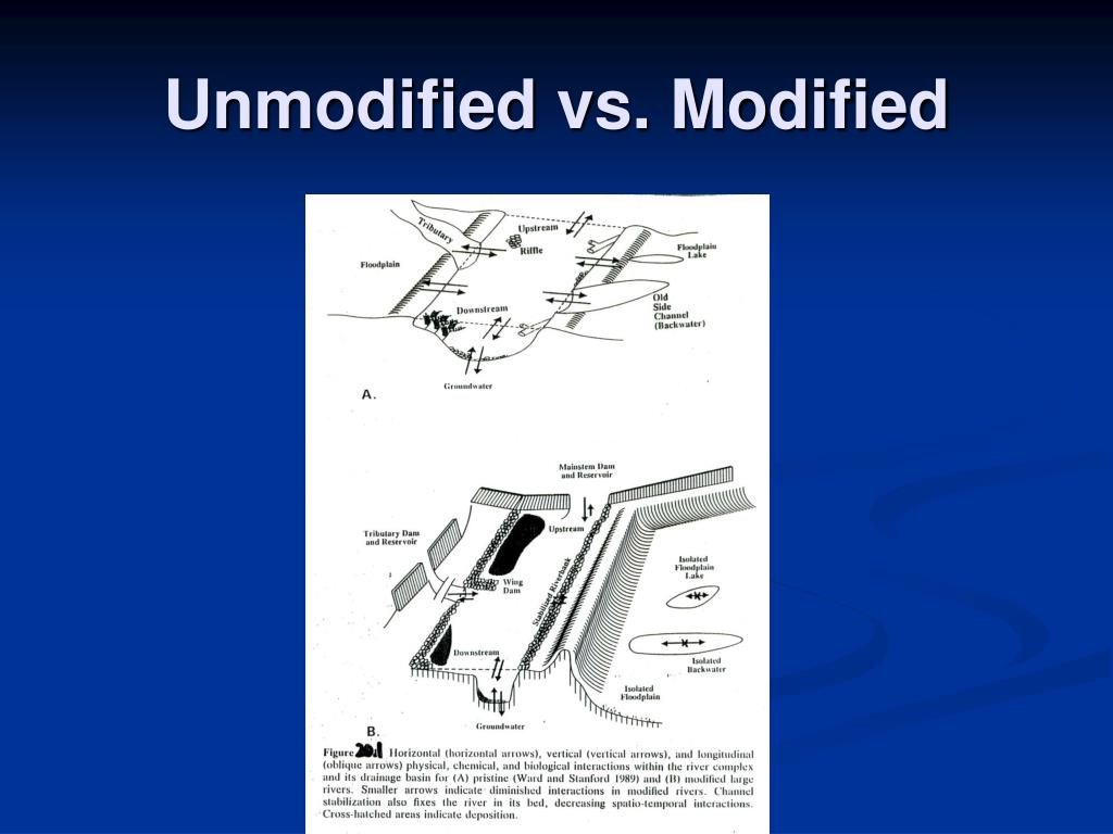 Unmodified vs. Modified