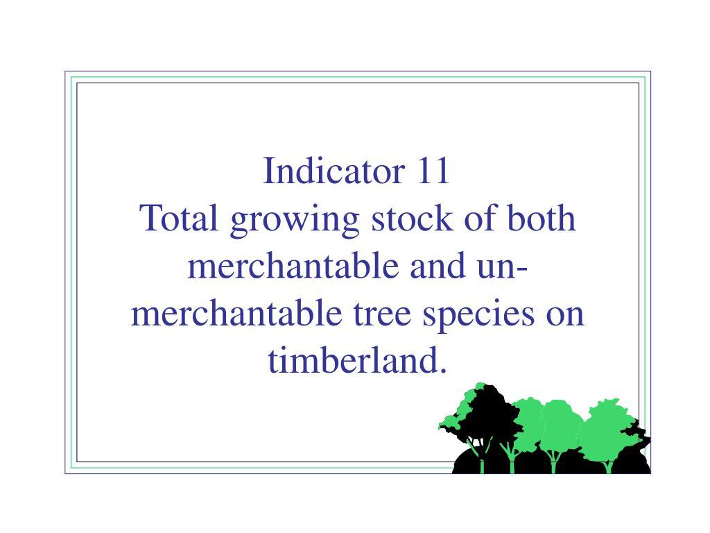 Indicator 11