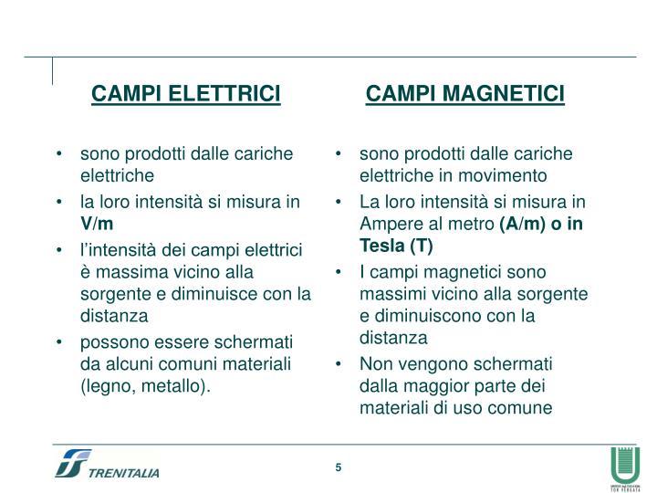 CAMPI ELETTRICI