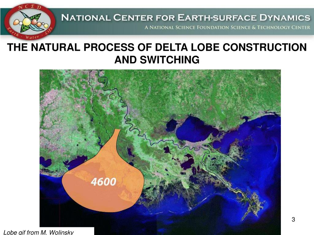 THE NATURAL PROCESS OF DELTA LOBE CONSTRUCTION AND SWITCHING