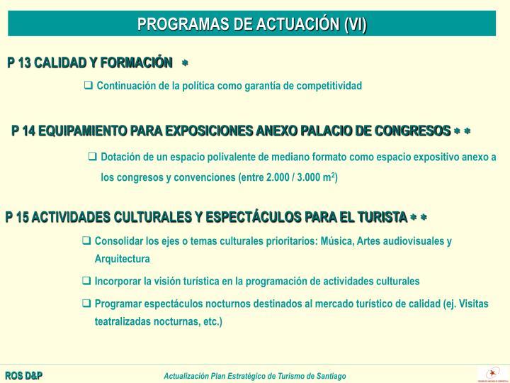 PROGRAMAS DE ACTUACIÓN (VI)
