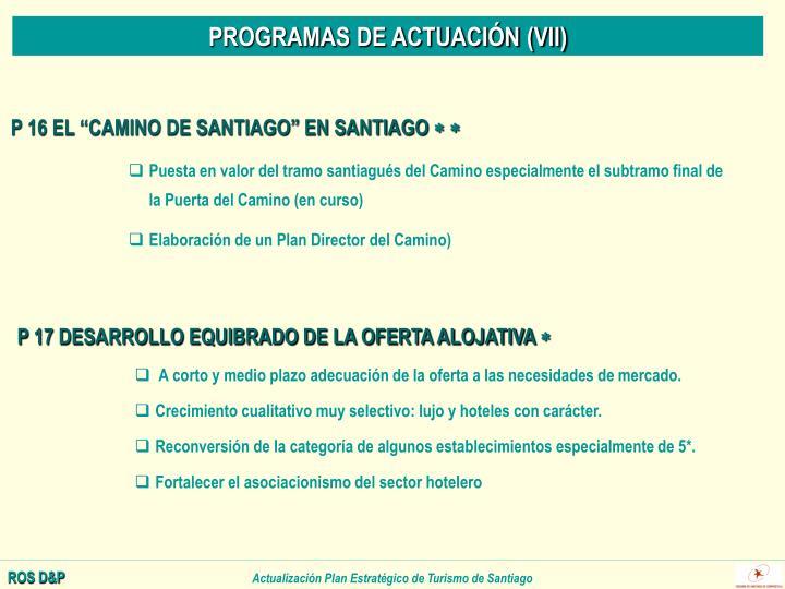 PROGRAMAS DE ACTUACIÓN (VII)