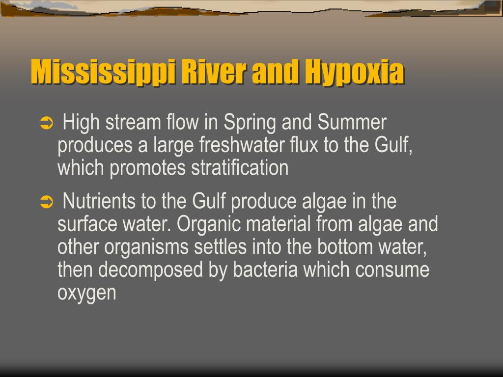 Mississippi River and Hypoxia