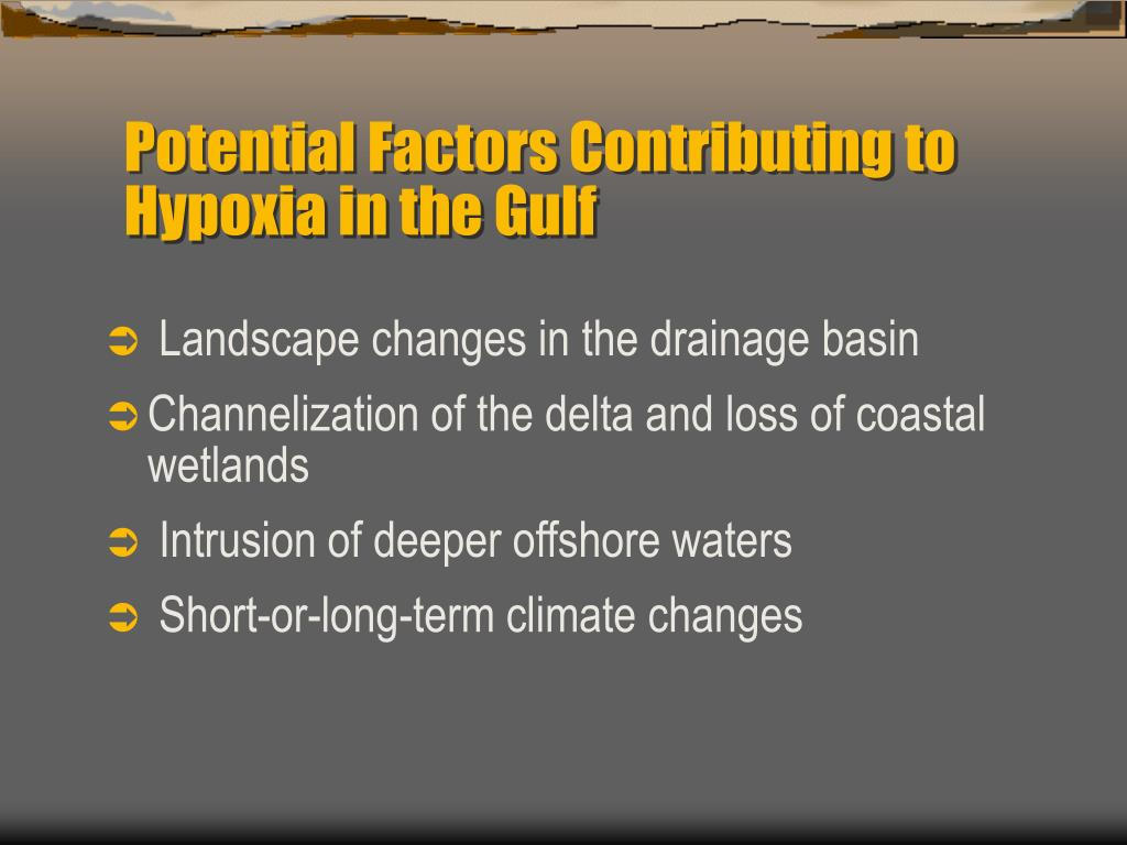 Potential Factors Contributing to Hypoxia in the Gulf
