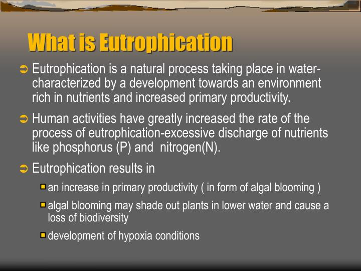 What is eutrophication