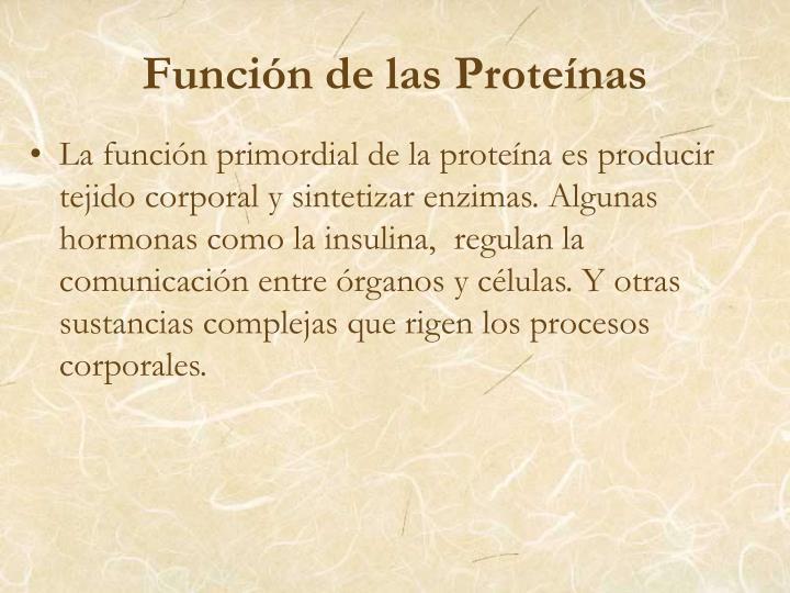 Función de las Proteínas