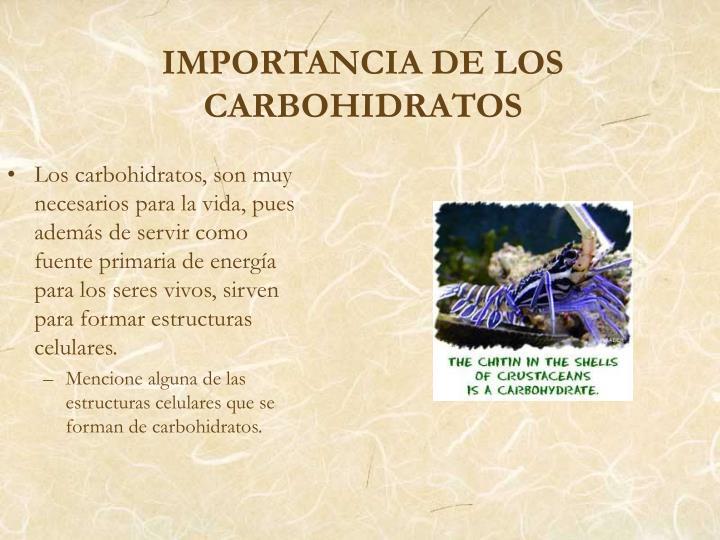 Los carbohidratos, son muy necesarios para la vida, pues además de servir como fuente primaria de energía para los seres vivos, sirven para formar estructuras celulares.