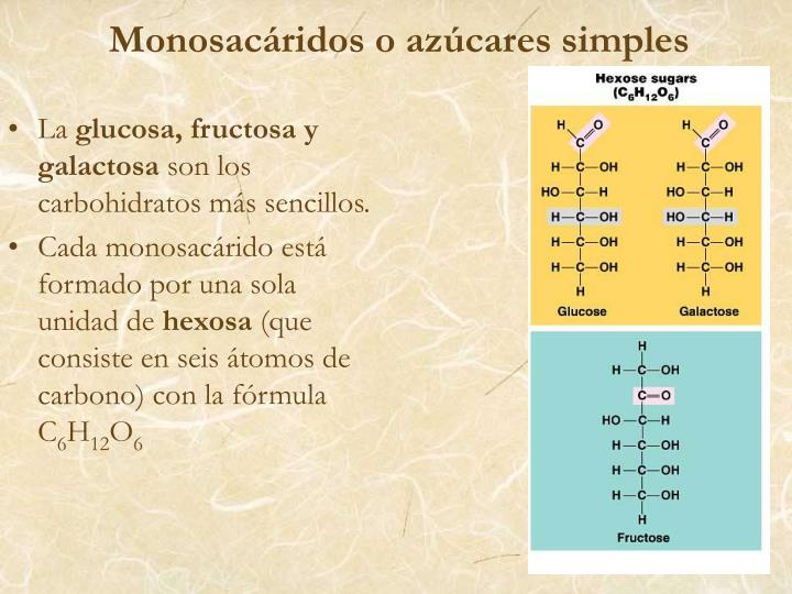 Monosacáridos o azúcares simples