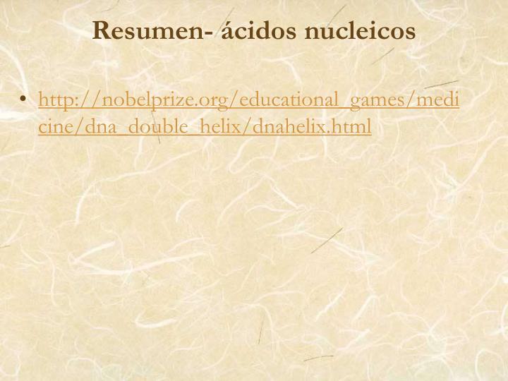 Resumen- ácidos nucleicos