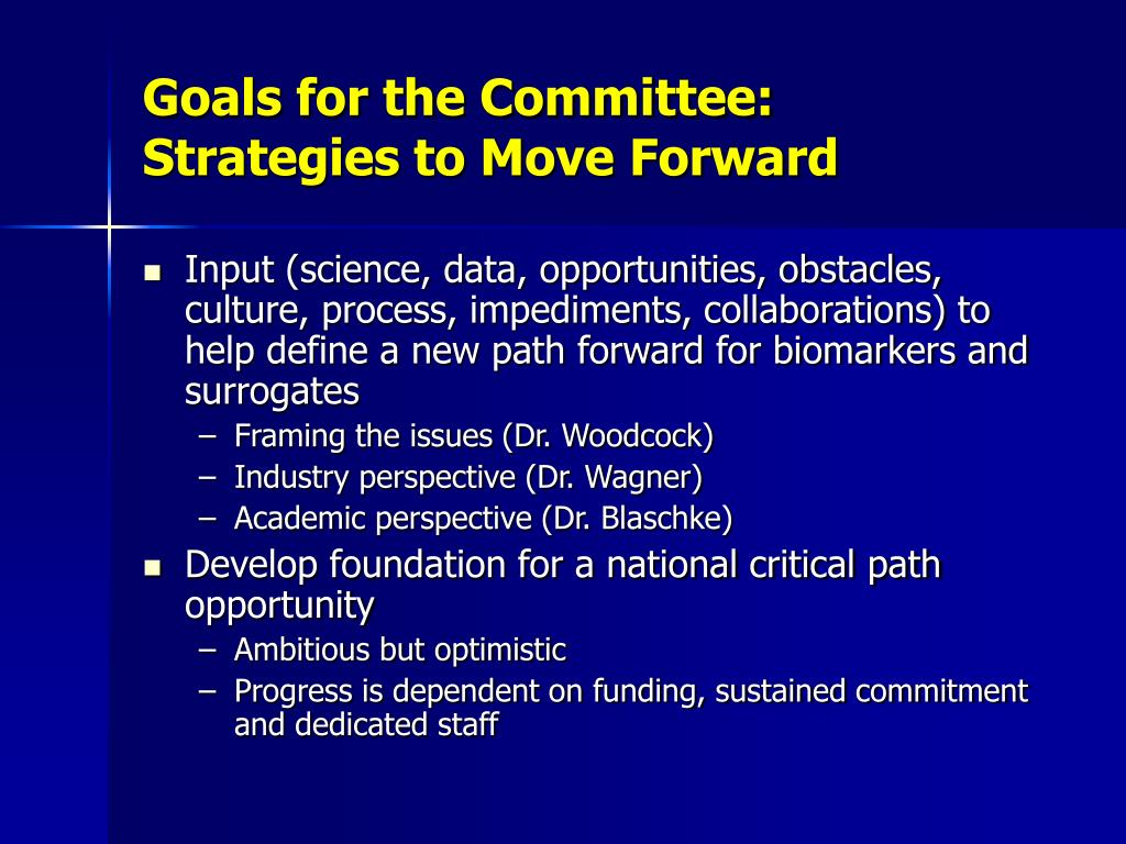 Goals for the Committee:  Strategies to Move Forward