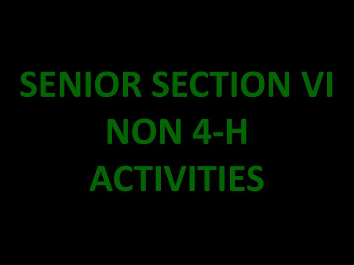 SENIOR SECTION VI NON 4-H ACTIVITIES