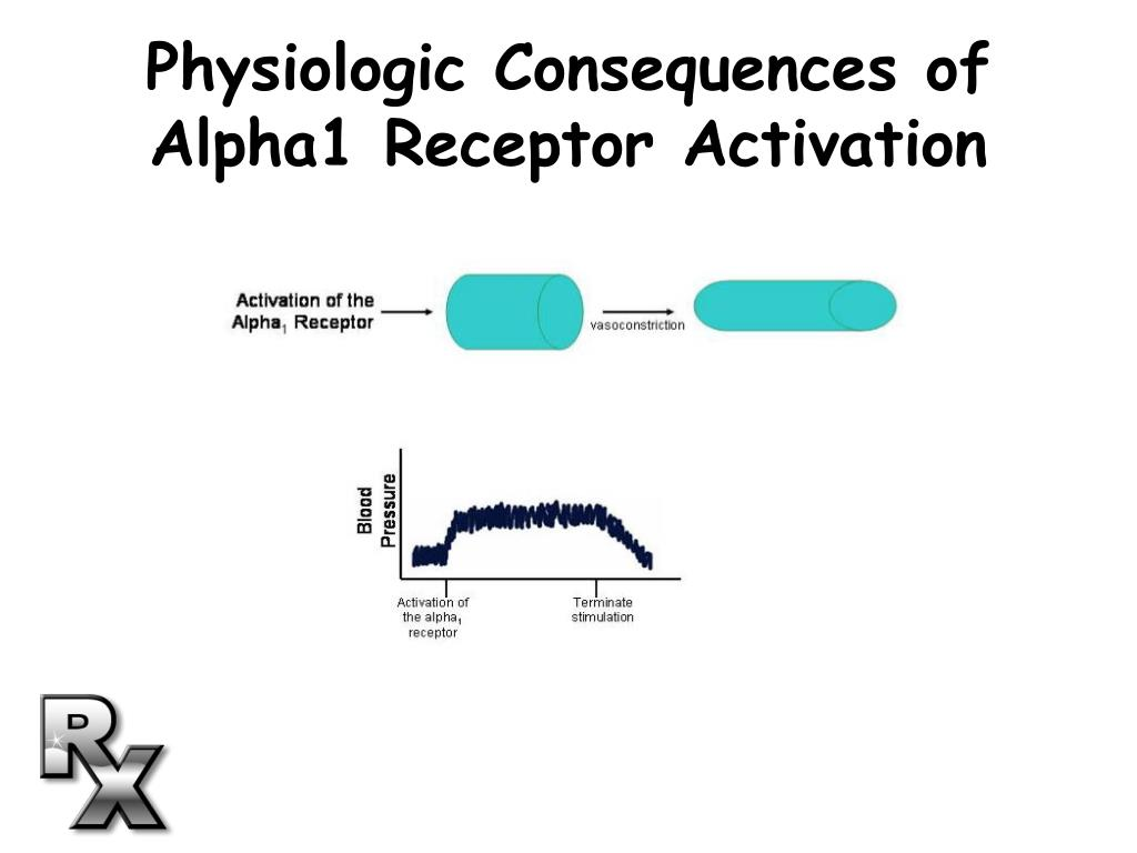 Physiologic Consequences of Alpha1 Receptor Activation