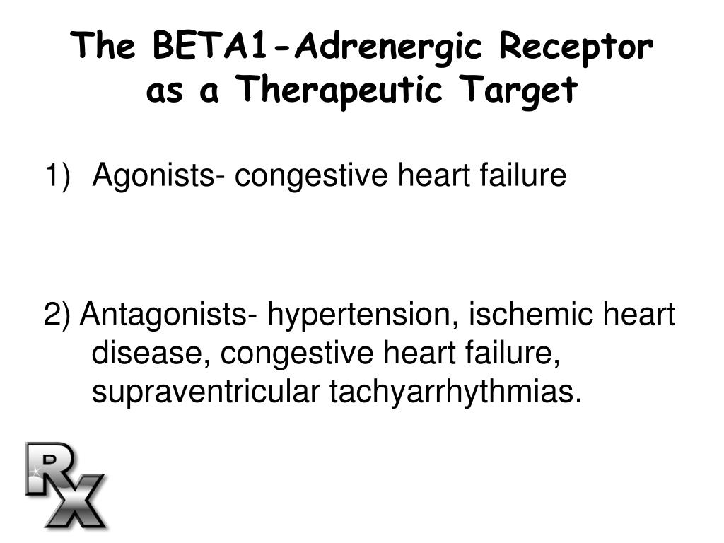 The BETA1-Adrenergic Receptor as a Therapeutic Target