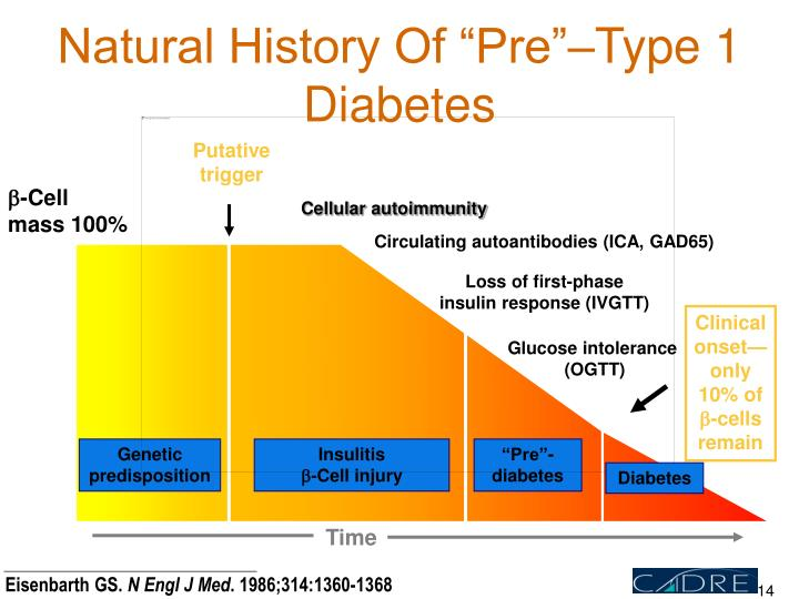 "Natural History Of ""Pre""–Type 1 Diabetes"