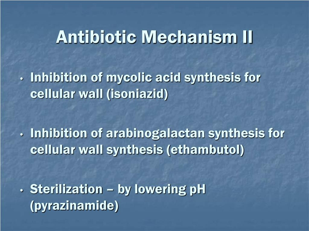 Antibiotic Mechanism II
