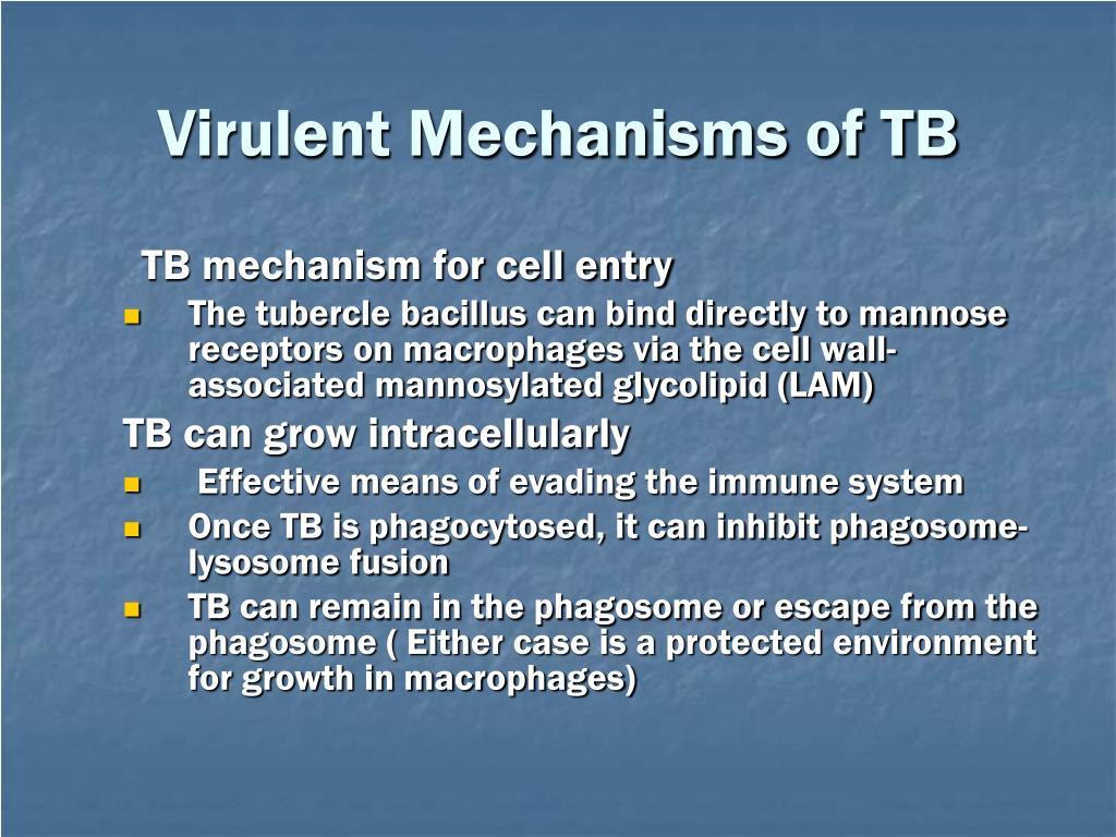 Virulent Mechanisms of TB
