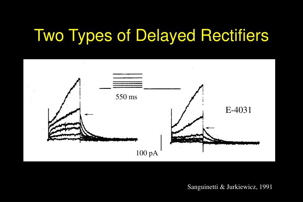 Two Types of Delayed Rectifiers
