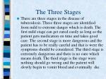 the three stages