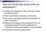 how can the private sector scale up participation