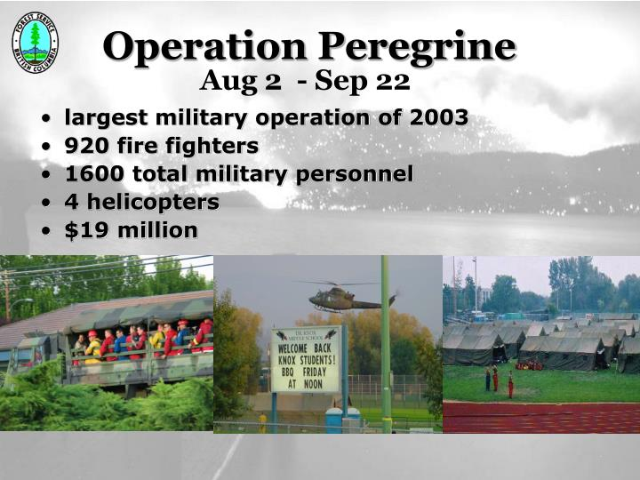 Operation Peregrine