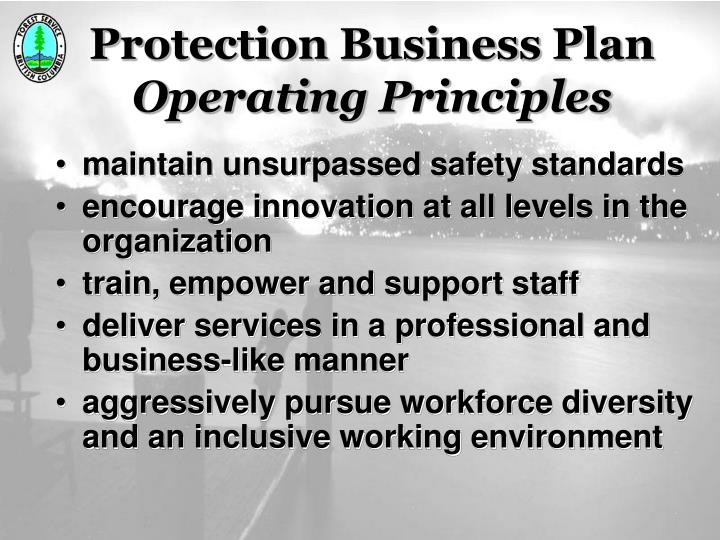 Protection Business Plan