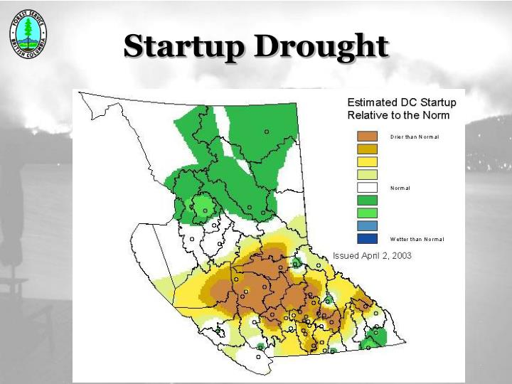 Startup Drought