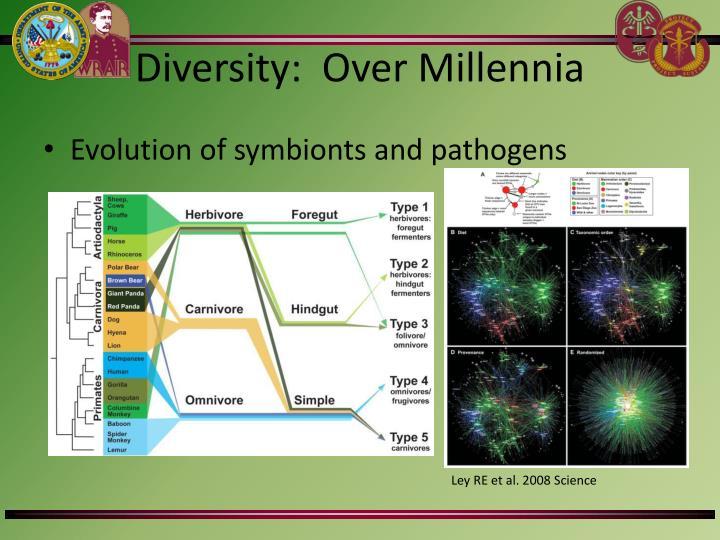 Diversity:  Over Millennia