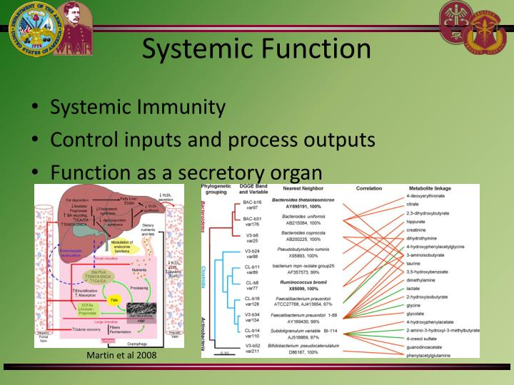 Systemic Function