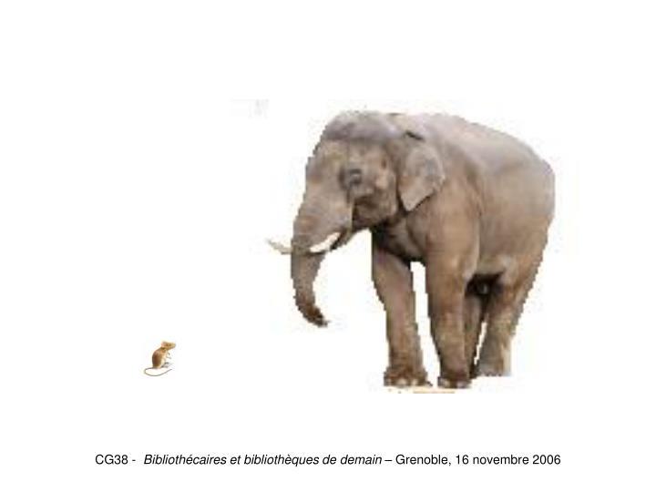 Souris-Eléphant