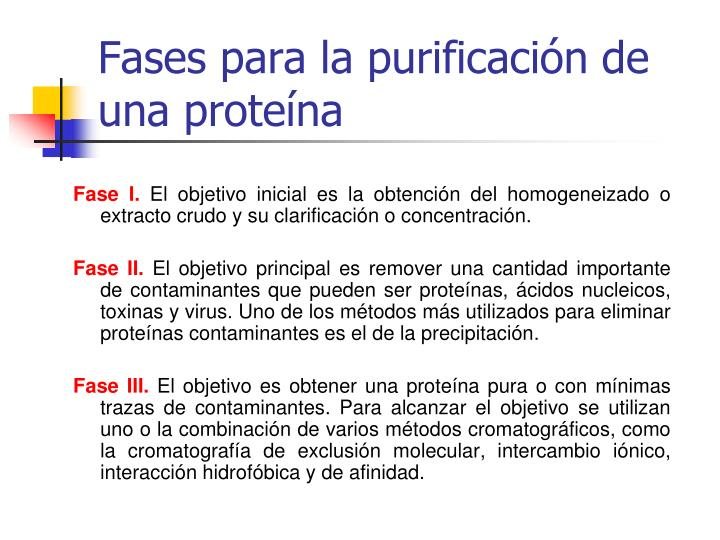 Fases para la purificación de una proteína