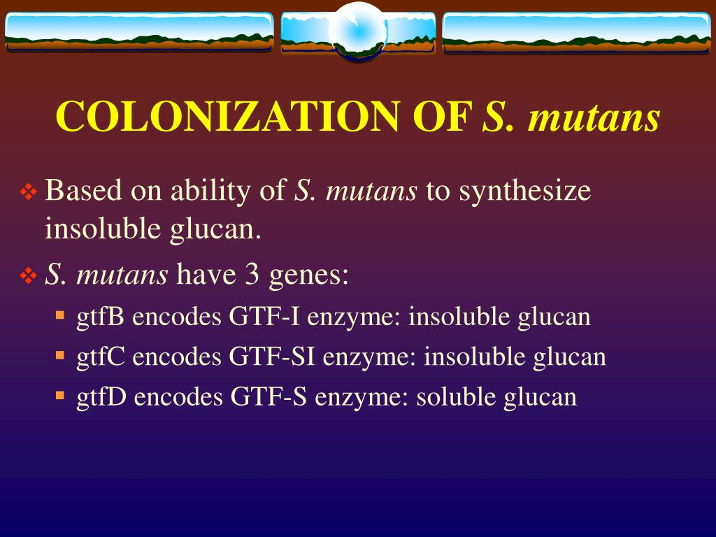 COLONIZATION OF