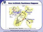 how antibiotic resistance happens7